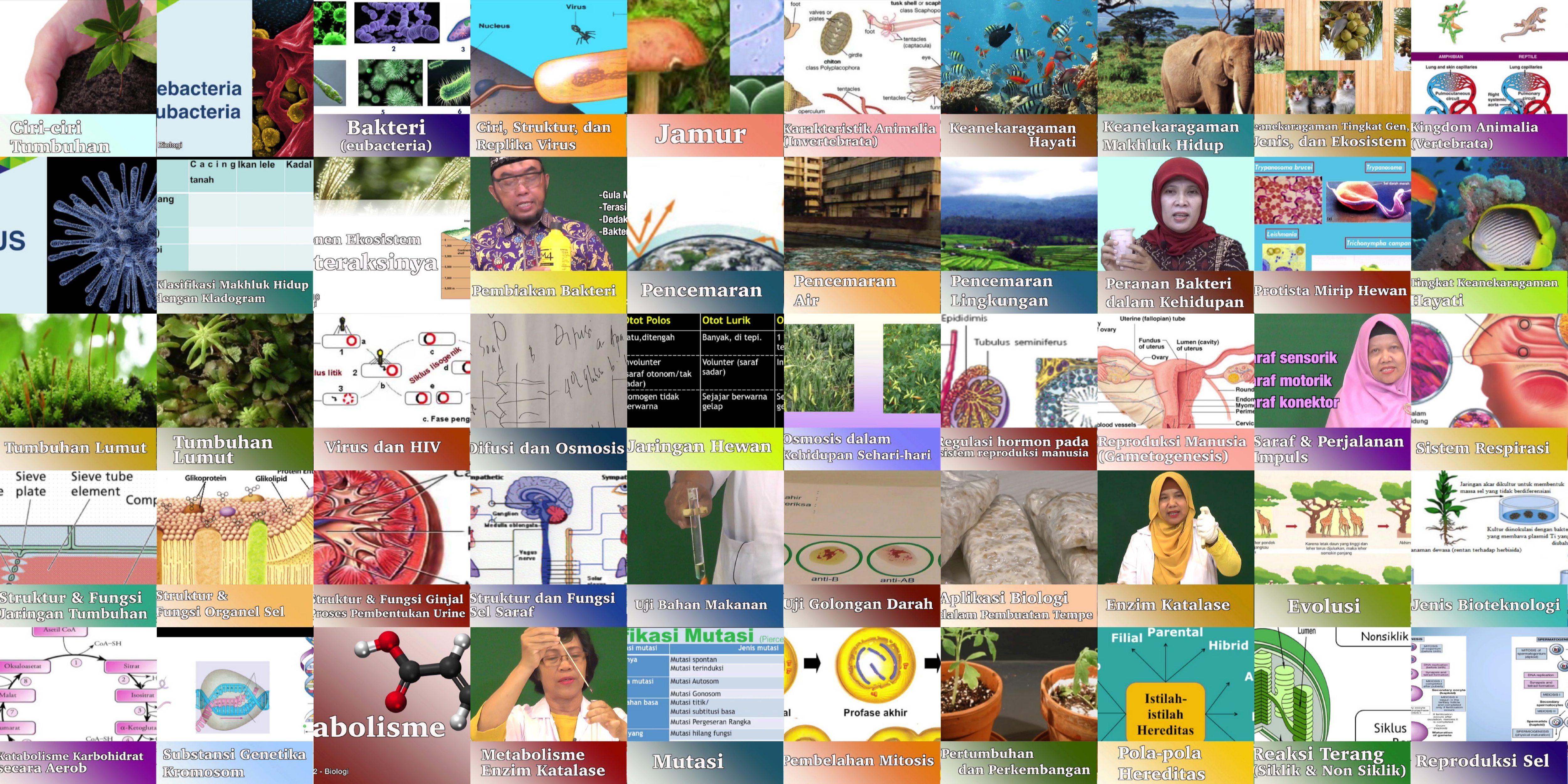 video pendidikan video pembelajaran biologi SMA